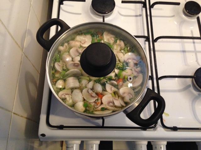 Gemakkelijke kippensoep in de pan