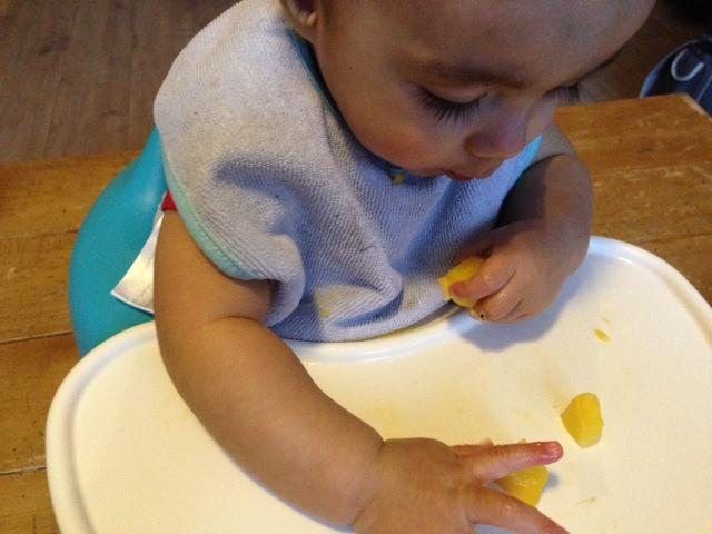 Stukjes mango eten – Rapley