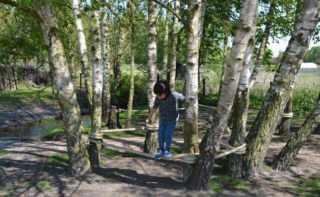 klimbomen natuurspeeltuin voorschoten
